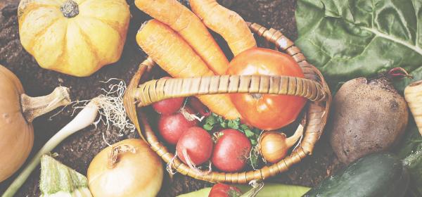 オーガニック野菜&無添加食品